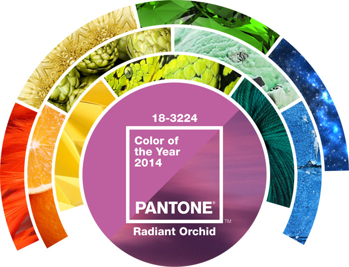 Pantone Color of the Year Banner Top